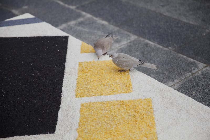 Paula Bruna Ofrenda Arte para pájaros Ecoss Arts Santa Mònica