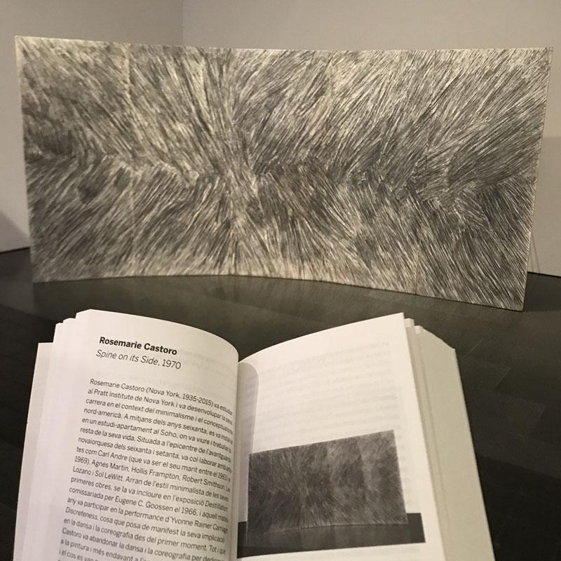 Rosemarie Castoro Manual del MACBA Arte Contemporáneo